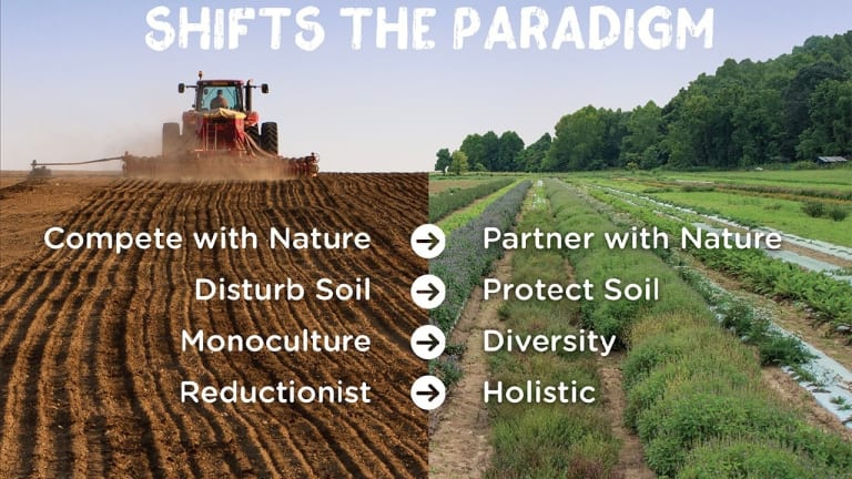 What is regenerative farming? Experts say it can combat climate change