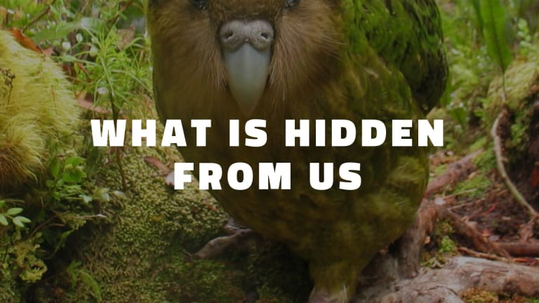 What Is Hidden From Us