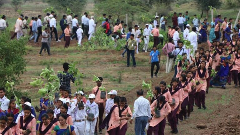 1.5 Million Volunteers Plant 66 Million Trees in 12 Hours, Breaking World Record